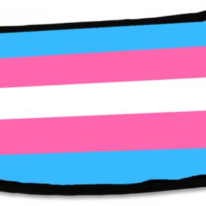 Maseczka: trans flaga